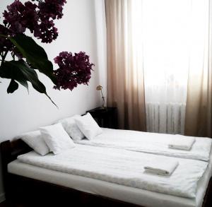 Apartament Pod Trzynastką
