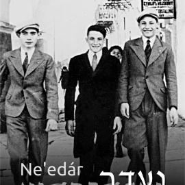 Ne'edár/ נֶעְדַּר /Nieobecni – z dziejów społeczności żydowskiej w Sandomierzu - wernisaż wystawy